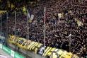 Dynamo Dresden vs. VfL Bochum